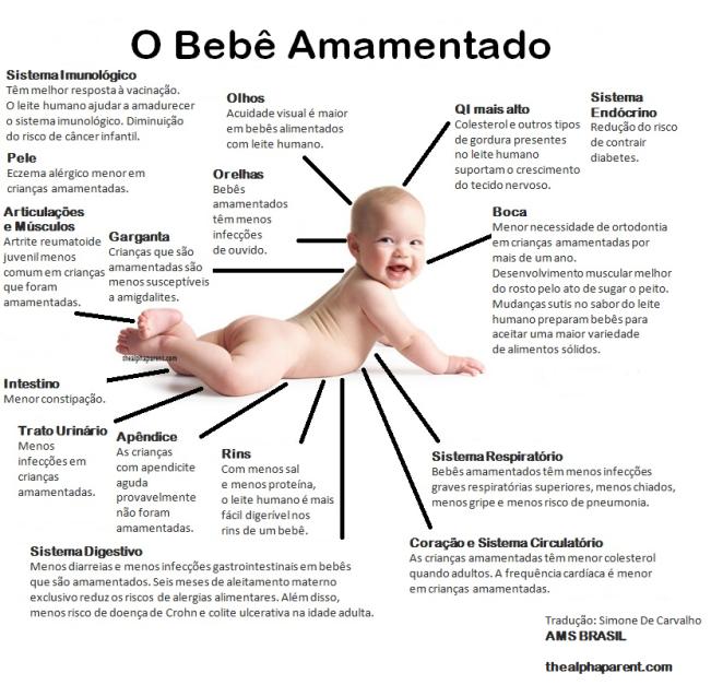 O Bebê Amamentado